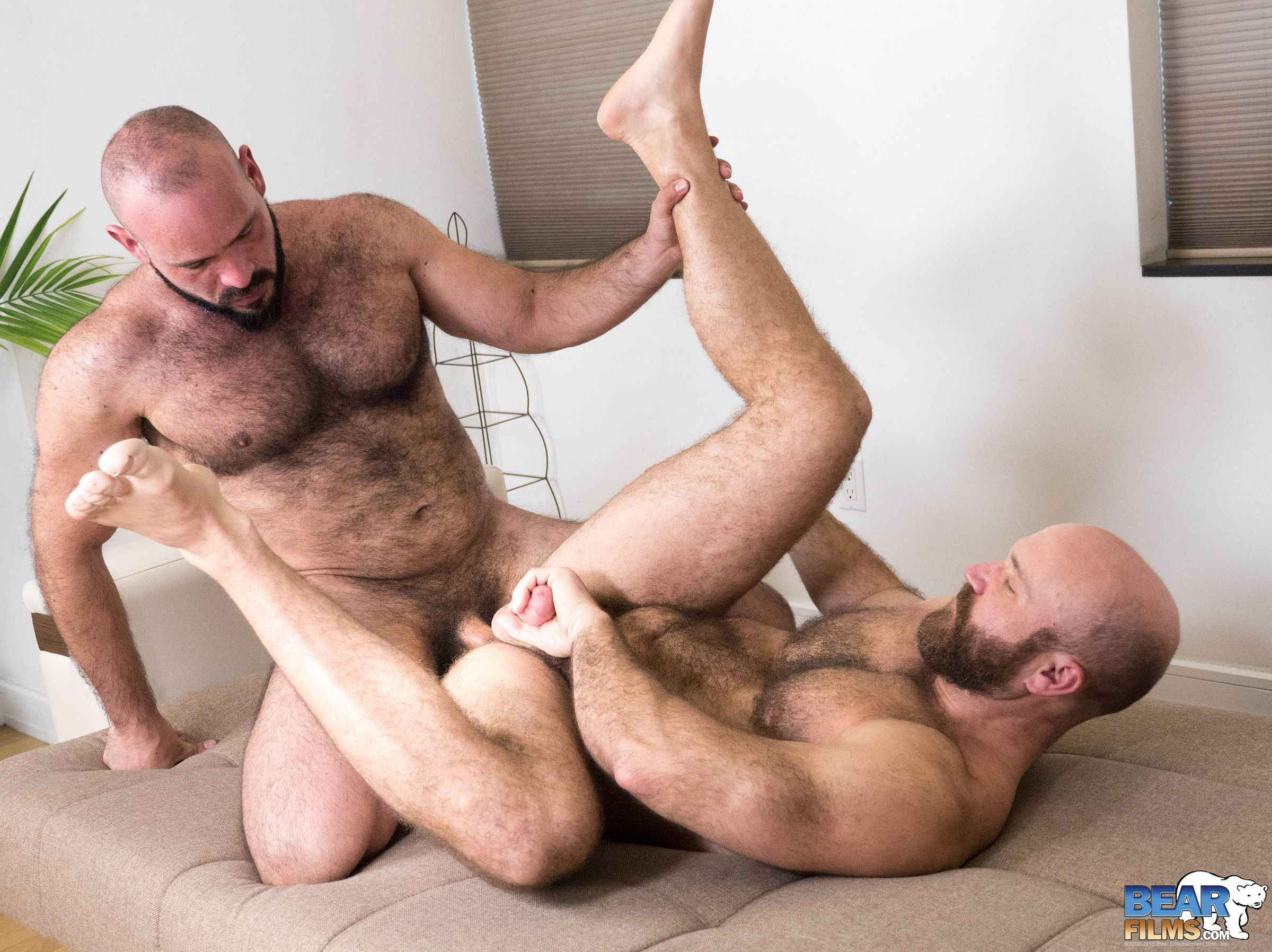 image Bears anal fuck movie gay angry as fuck